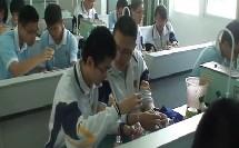 高中生物必修课《探究影响酶活性的因素》福建省,2014年度全国部级优课评选入围优质课教学视频