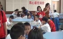 一年级科学《观察一种动物》优秀课堂实录-天津市南开区川府里小学