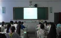 人教课标版-2011化学-《中考专题复习——沉淀  》课堂教学视频-李琳