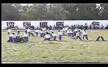 发展跳跃能力的练习(海南省第四届小学体育优质课教学视频专辑)