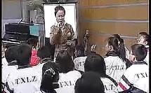神奇的音乐要素--瑶族舞曲(人音版初中音乐七八九年级优质课视频专辑)