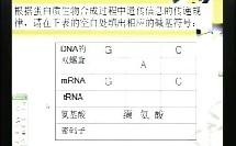 基因指导蛋白质的合成(高中生物广东名师经典课堂示范教学实录视频专辑)