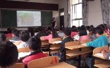 【高清视频】贵州盘县民主镇中学地理优质课封老师(法国)