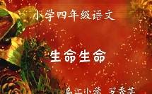 《生命生命》小学四年级语文优质课-乌江小学-罗秀英