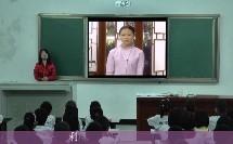 《北京亮起来》小学语文农村中小学现代远程教育模式一案例