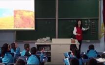 《小动物的家》优质课二年级语文