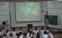 小学美术《动物的花衣裳》优质课教学视频-湖北赤壁试验小学教研活动