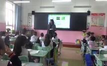统编版二年级《找春天》第二课时教学视频-小学语文省级骨干-窦老师