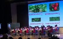 《3.分数加、减计算及应用练习》优质课展示视频(苏教版小学数学五年级下册)-黄义东