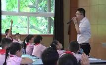 小学科学教科版一年级下册《观察一种动物》获奖课重庆市-江北区