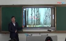 教研室同课异构研讨视频植树问题数学刘彬