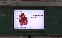 第三节 输送血液的泵——心脏_李老师二等奖_初中生物人教版七年级下学期_F4801