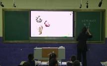 部编湘科版小学科学一年级下册《观察身边的动物》优质课视频+PPT课件,黑龙江