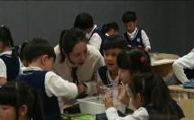 部编教科版小学科学一年级下册《观察一种动物》优质课视频+PPT课件,浙江省