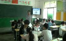 人教课标版-2011化学九下-实验活动4《金属的物理性质和某些化学性质》课堂教学视频-郭章成