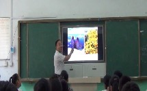 人教版地理七下-10《极地地区》课堂视频实录-淮北市