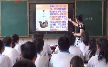 人教部编版历史 七下 第九课《宋代经济的发展》课堂教学视频-王洋