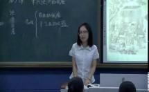 人教部编版历史 七下 第九课《宋代经济的发展》课堂教学视频-花玉琪