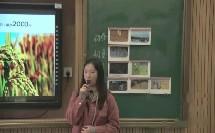 习惯养成:我是光盘小达人_黄老师(三等奖)_小学班会(不限版本)二年级不限学期_F7997