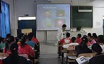 八年级初中物理优质课视频上册《光的直线传播》全国大赛