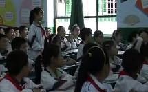 五年级品德与社会优质课展示下册《地球上的红飘带》