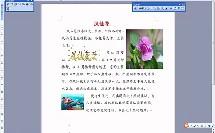 微课_三年级_信息技术_美化文档