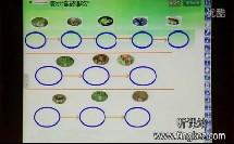 小学科学片段教学视频 食物网和食物链