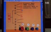 小学科学课件演示《种类繁多的植物》(中小学电子白板教学课件比赛展示)