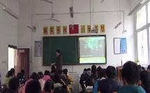 人教版初中八年级历史下册《探索建设社会主义的道路》教学视频,安徽省