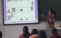 人教版七年级历史上册《汉通西域和丝绸之路》教学视频,江苏省