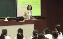 辽大版六年级心理健康《心灵的旅程》省级优课视频,吉林省