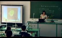 第六章 绿色植物的光合作用和呼吸作用(初中生物_苏教2011课标版_七年级上册(2013年6月第2版))