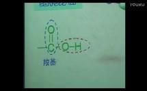 4、羧酸氨基酸和蛋白质(高中化学_鲁科2003课标版_选修五)