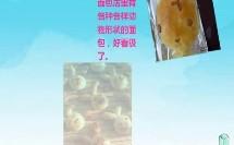 幼儿园微课-神奇的面包(商洛市丹凤县幼儿园:贺丹玲 刘丹霞)