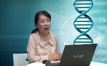 高中生物《DNA的复制》专家点评
