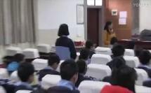 《金属的化学性质》课例视频(一)