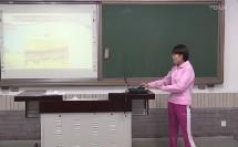 《排球:正面下手双手垫球》说课-北京市白家庄小学 王娟