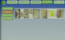 《探秘种子各结构的发育》说课-北京市通州区第二中学 商允菊