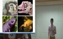 初中生物《两栖动物和爬行动物》广州市真光中学(初中生物优质课教学研讨实录)
