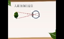 初中_物理_神奇的眼睛微课