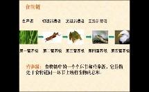 高中_生物_食物链、食物网微课
