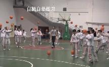 人教体育与健康课标版五六年级《排球正面下手双手垫球》教学视频,获奖课视频