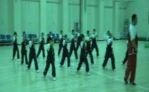 人教体育与健康课标版三至四年级《武术组合动作》教学视频,获奖课视频
