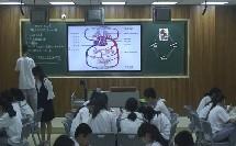 初中生物人教版七下《4.3  输送血液的泵——心脏》福建蔡舒艳