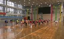 《篮球-进行间单手肩上投篮》优质课(人教版初一体育与健康,顾世军)