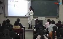 《生活中的透镜》赵瑞丽 新密市第一初级中学