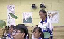 人教版初中美术八年级上册第2课《借物寓意》获奖课教学视频