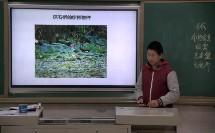 中图版初中地理七年级下册第二节《旅游资源》获奖课教学视频
