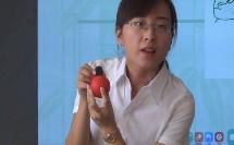 湘教版初中地理七年级上册第一节《认识地球》获奖课教学视频