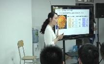 岳麓版高中历史必修三第二单元第7课《汉字与书法》课堂教学视频实录-姜嘉红
